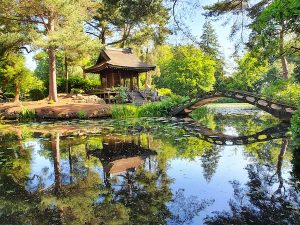 Manchester - Tatton Park Japanese Garden